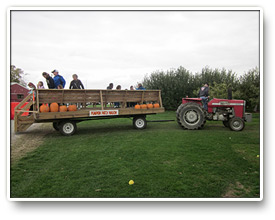 Pleasant View Apple Orchard Pumpkin Patch Wagon